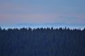 Luftspiegelung am Bayrischen Wald