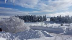 Wintermorgen (Foto: Anke Denner)